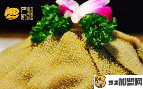 严厨老坛酸菜鱼官网为您解答酸菜鱼加盟合作流程!-第2张图片-好项目加盟网